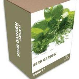 Grow It: Ervas Aromáticas (Entrega em 24h)