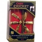 Puzzle Cricket Nível 2