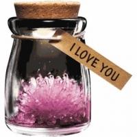 Para ela, top10ela, 08022013, 06032013, primavera, mae flores, Ar Livre Primavera, Para Mãe, Dia da Mulher, Mujer, Madre