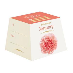 Flores de Aniversário - Janeiro (Entrega em 24h)