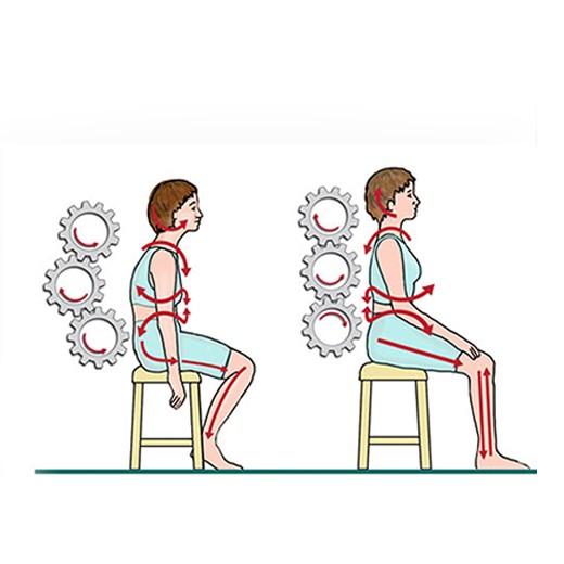 Colete Corretor de Postura Magnético