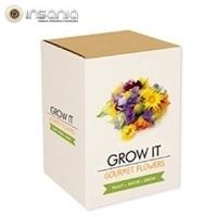 Grow it, Primavera, planta em casa, Flores e Plantas, Dia da Mãe, Dia da Mãe, Passatempos, Para Mãe, Amigo Secreto, Madre