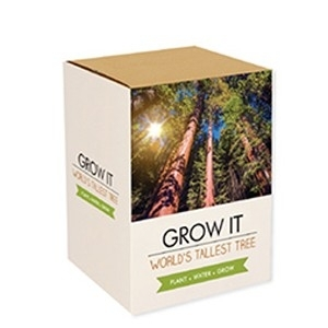 Grow It: A Árvore Mais Alta do Mundo (Entrega em 24h)