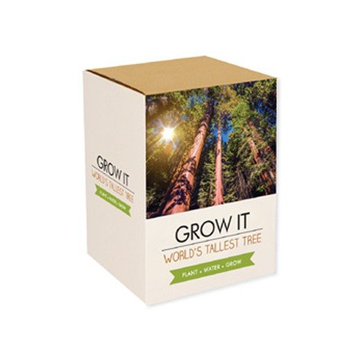 Grow It: A Árvore Mais Alta do Mundo