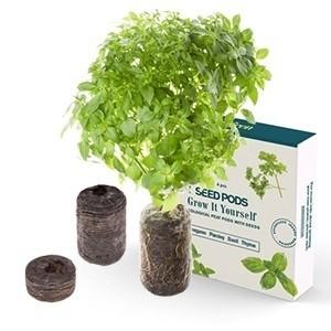 Conjunto de 4 tipos de sementes Tregren (Entrega em 24h)